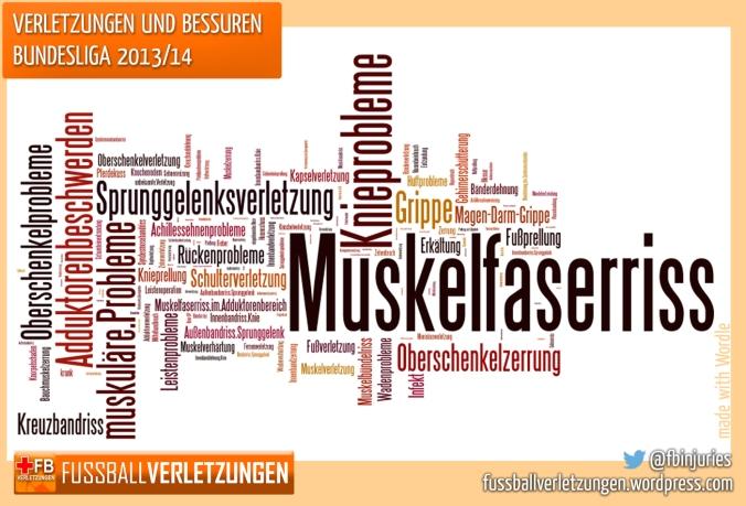 Verletzungen der Bundesliga-Saison 2013/14 nach Häufigkeit