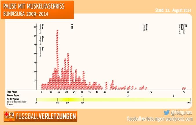 Pause mit Muskelfaserriss Bundesliga 2009-2014