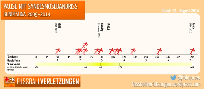Pause mit Syndesmosebandriss, Bundesliga 2009-2014