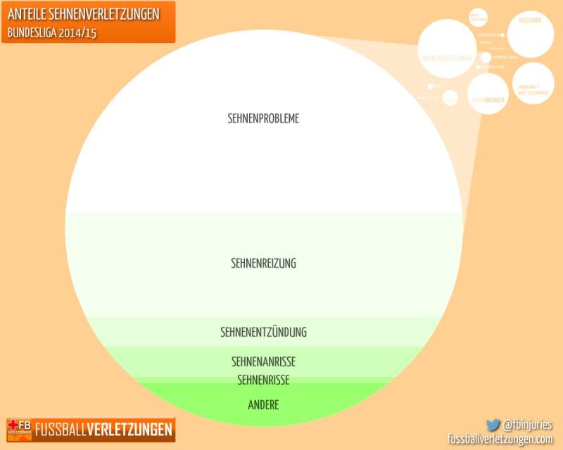 Grafik: Die häufigsten Sehnenverletzungen. Am häufigsten sind Sehnenprobleme.